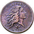 [photo: Flowing Hair (Wreath reverse) Large Cent]