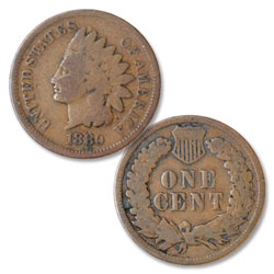 1880 Indian Head Cent, Variety 3, Bronze