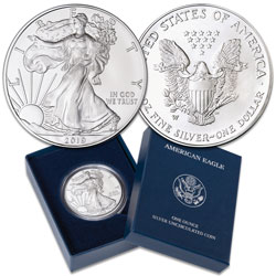 2019-W Burnished American Eagle Silver Dollar