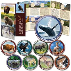 American Wildlife Series Custom Folder and Coins