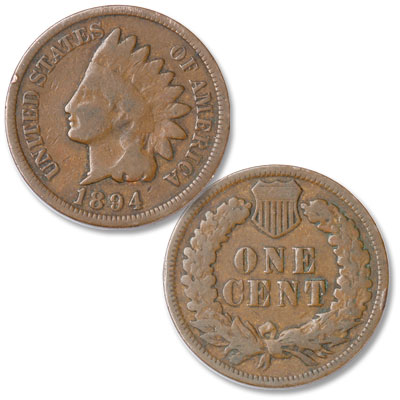 Image for 1894 Indian Head Cent, Variety 3, Bronze from Littleton Coin Company