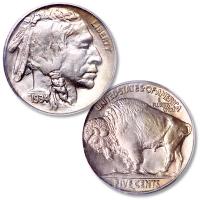 Image for 1934-D Buffalo Nickel from Littleton Coin Company