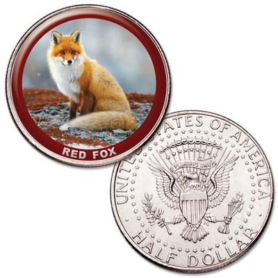 Image for Red Fox Colorized Kennedy Half Dollar from Littleton Coin Company