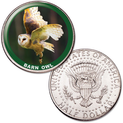 Image for Barn Owl Colorized Kennedy Half Dollar from Littleton Coin Company