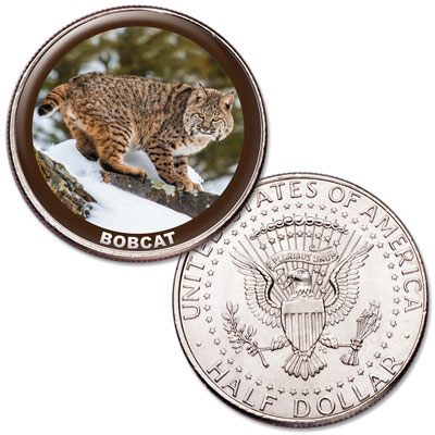 Image for Bobcat Colorized Kennedy Half Dollar from Littleton Coin Company