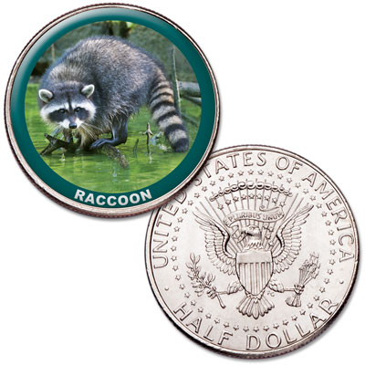 Image for Raccoon Colorized Kennedy Half Dollar from Littleton Coin Company