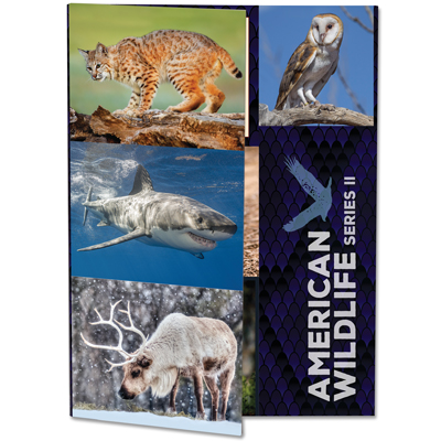 Image for American Wildlife Series II Folder from Littleton Coin Company