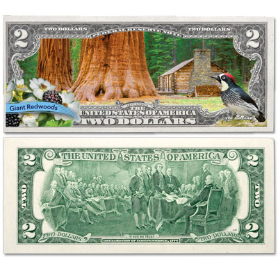 Image for Colorized $2 Federal Reserve Note Great American Landscapes - Giant Redwoods from Littleton Coin Company